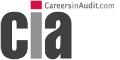 Careers In Audit